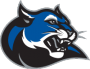 Culver-Stockton College