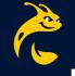 University of California-Santa Cruz