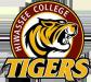 Hiwassee College